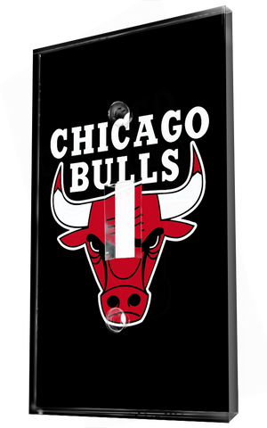 Chicago Bulls Nba Team Logo