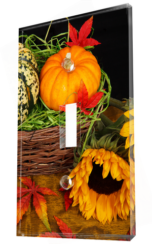Colorful Autumn Pumpkins Basket And Sunflowers