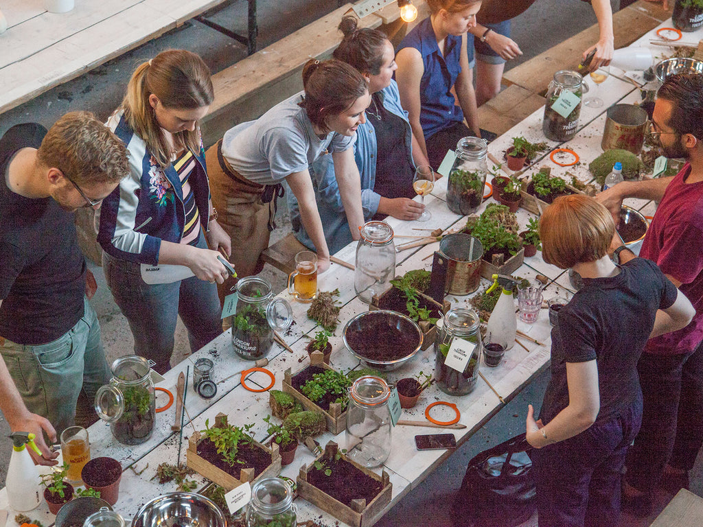 London Terrariums Workshop at Future and Found