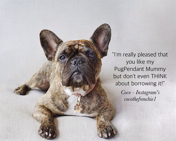 Coco the Frenchie wears a Starburst PugPendant, luxury for Dogs by Canine Chic of London