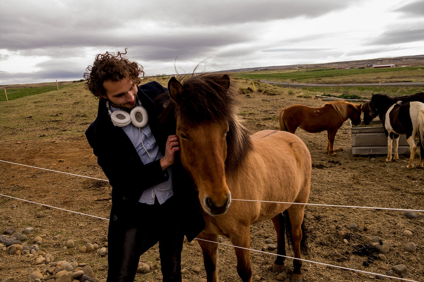Icelandic horse with Alex Feal Latte wanderer
