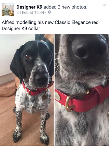 Alfred modelling his new Classic Elegance in red.