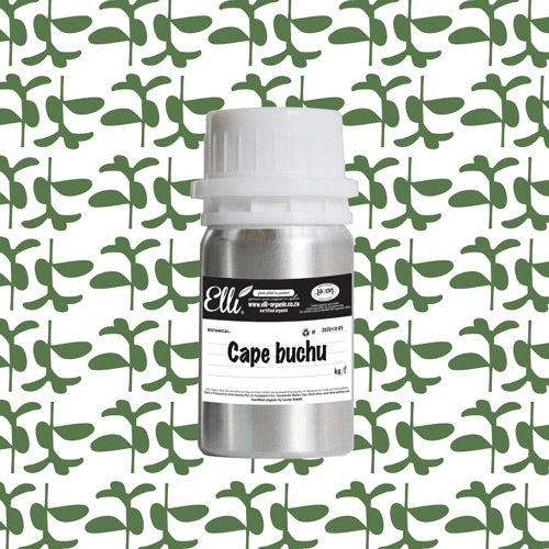 Organic Cape Buchu Oil