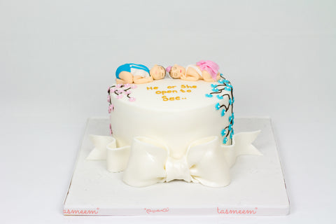 Boy or Girl! Gender Reveal Cake