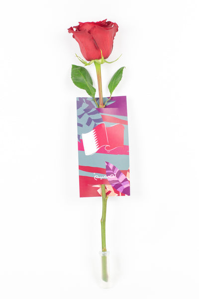 Single Red Rose with Card