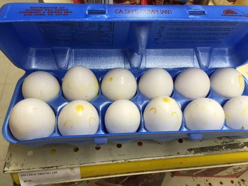 Olivera Large Eggs 1 Dozen