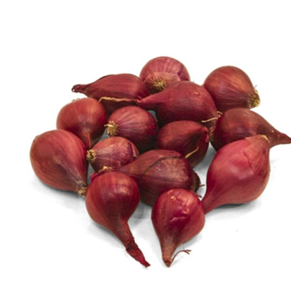 Onion Red Pearl 1 Packet