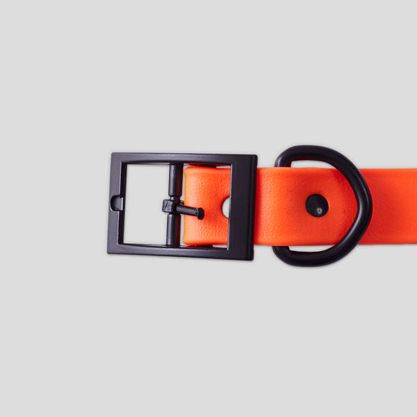 DOG COLLAR RUBBERIZED ORANGE