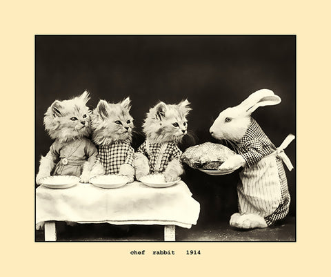 chef rabbit 1914