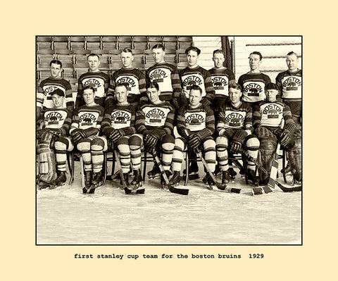 first stanley cup team for the boston bruins  1929