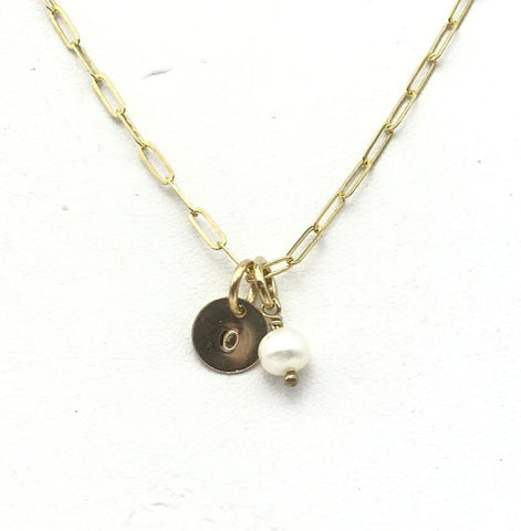 Paige 14kt Gold Filled Disk and Pearl Necklace