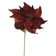"Vickerman 22"" Chocolate Poinsettia Artificial Christmas Flower, 6 per Bag"
