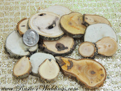 100 Wood Slices- 1 to 3 inch
