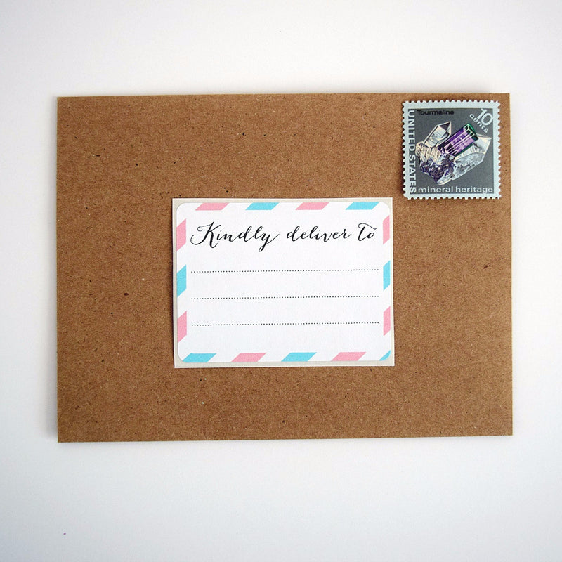Pink and Blue Kindly Deliver to Labels / Shipping Address Labels - Once Upon Supplies - 1