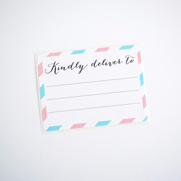 Pink and Blue Kindly Deliver to Labels / Shipping Address Labels - Once Upon Supplies - 4