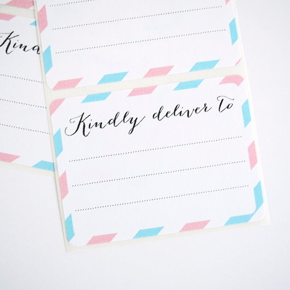 Pink and Blue Kindly Deliver to Labels / Shipping Address Labels - Once Upon Supplies - 3