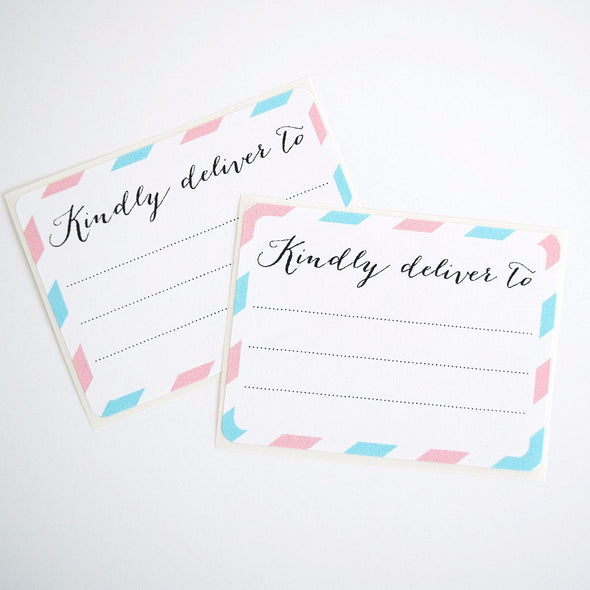 Pink and Blue Kindly Deliver to Labels / Shipping Address Labels - Once Upon Supplies - 2