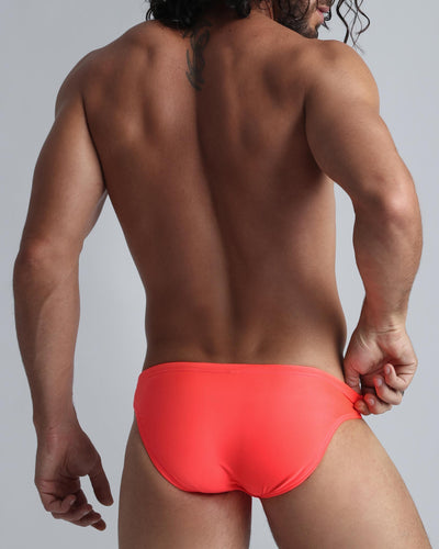 Ginger Swim Mini Brief Bang Clothes Men Swimwear Swimsuits back view