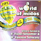 A World of Middos  - Bamidbar (English) - Toys 2 Discover - 1