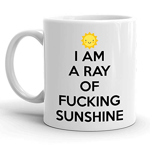 I AM A RAY OF FUCKING SUNSHINE... MUG