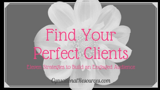 Find Your Perfect Clients - Eleven Strategies to Build an Engaged Audience