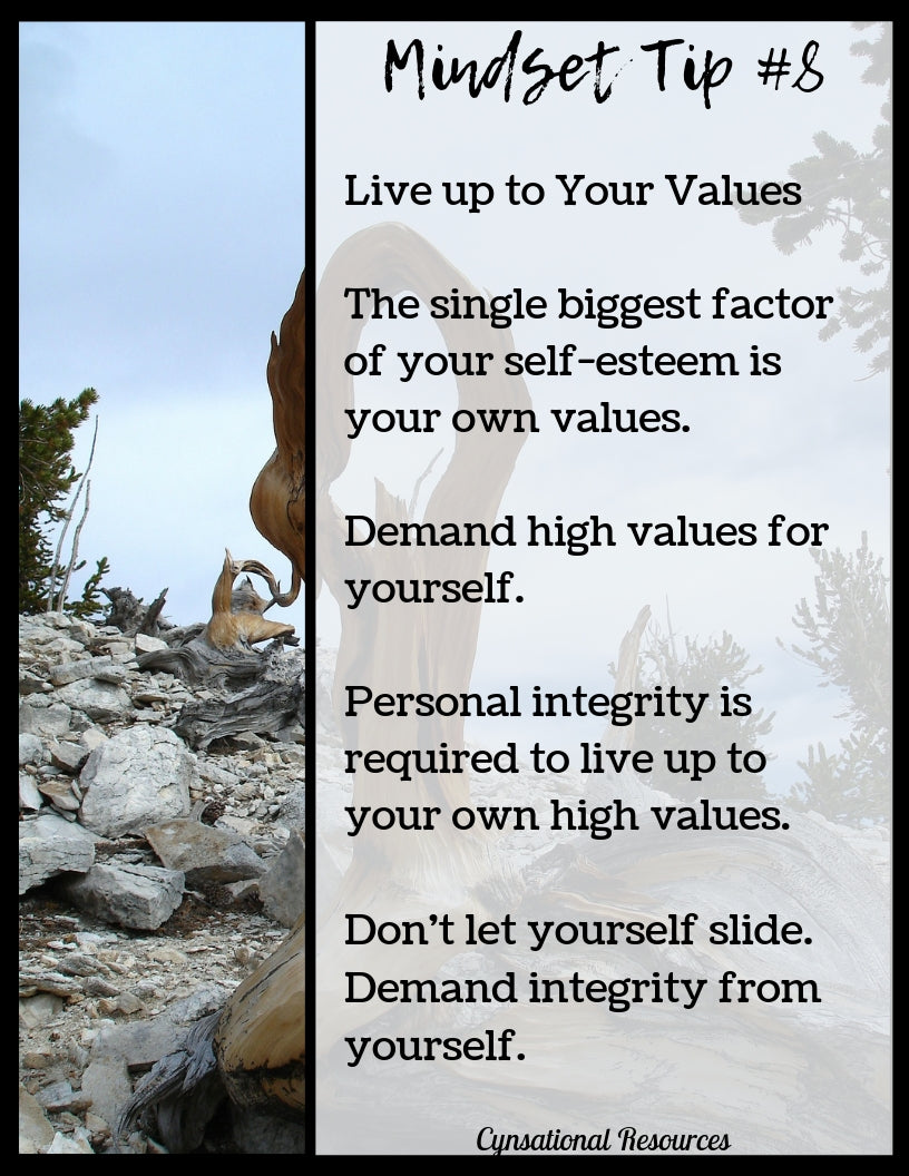 Mindset Tip #8 Live up to Your Values