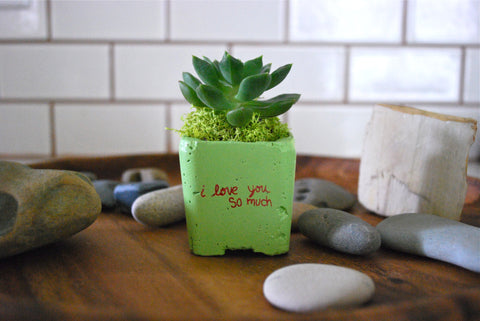 I LOVE YOU SO MUCH MAGNET PLANTER