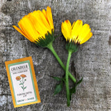 DIY Edible Flower Garden Kit - Easily grow three varieties from seed!