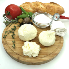 Farmer's Cheese Making Kit - Learn how to make home made cheese