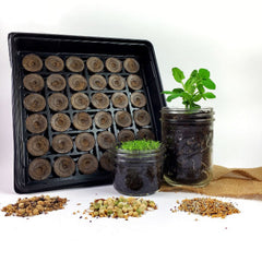 Culinary Herb DIY Garden Starter Kit - Learn how to grow your own herbs at home!