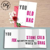 Funny card for her, funny birthday card, you old hag, stone cold fox, snarky card for her, hidden message card, sarcastic card, foldout card