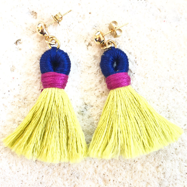 Tassel Statement Earrings - Tropical - Love Andrea's Closet