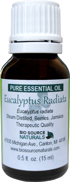 Eucalyptus Radiata Essential Oil - 1 fl oz (30 ml)