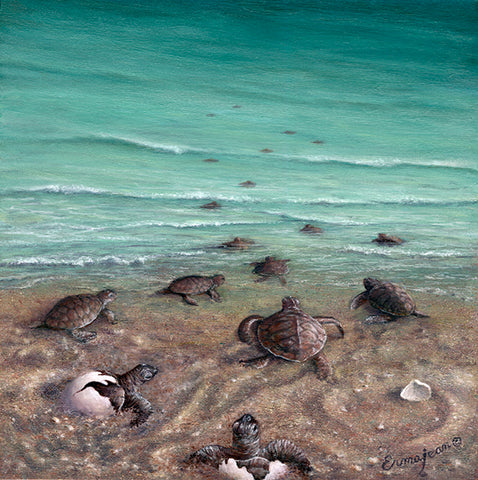 Baby Sea Turtles - by Erma Jean pa004