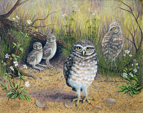Owls Family- by Erma Jean pa014
