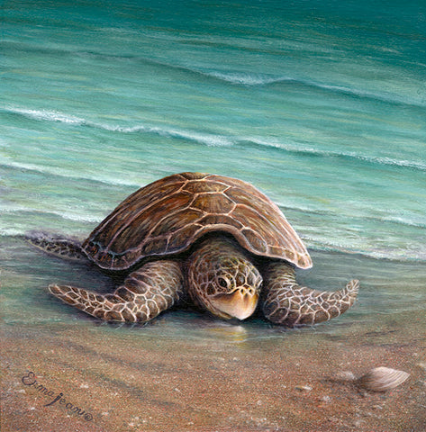 Mom Sea Turtle - by Erma Jean pa006