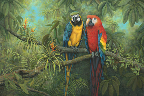 Parrots in the Jungle- by Erma Jean pa011