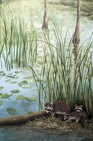 Erma Jean Mural 004- Cute Racoons - 46 inch W - Custom Size Wall Mural Living Room Wall Decors Grass Wall Papers
