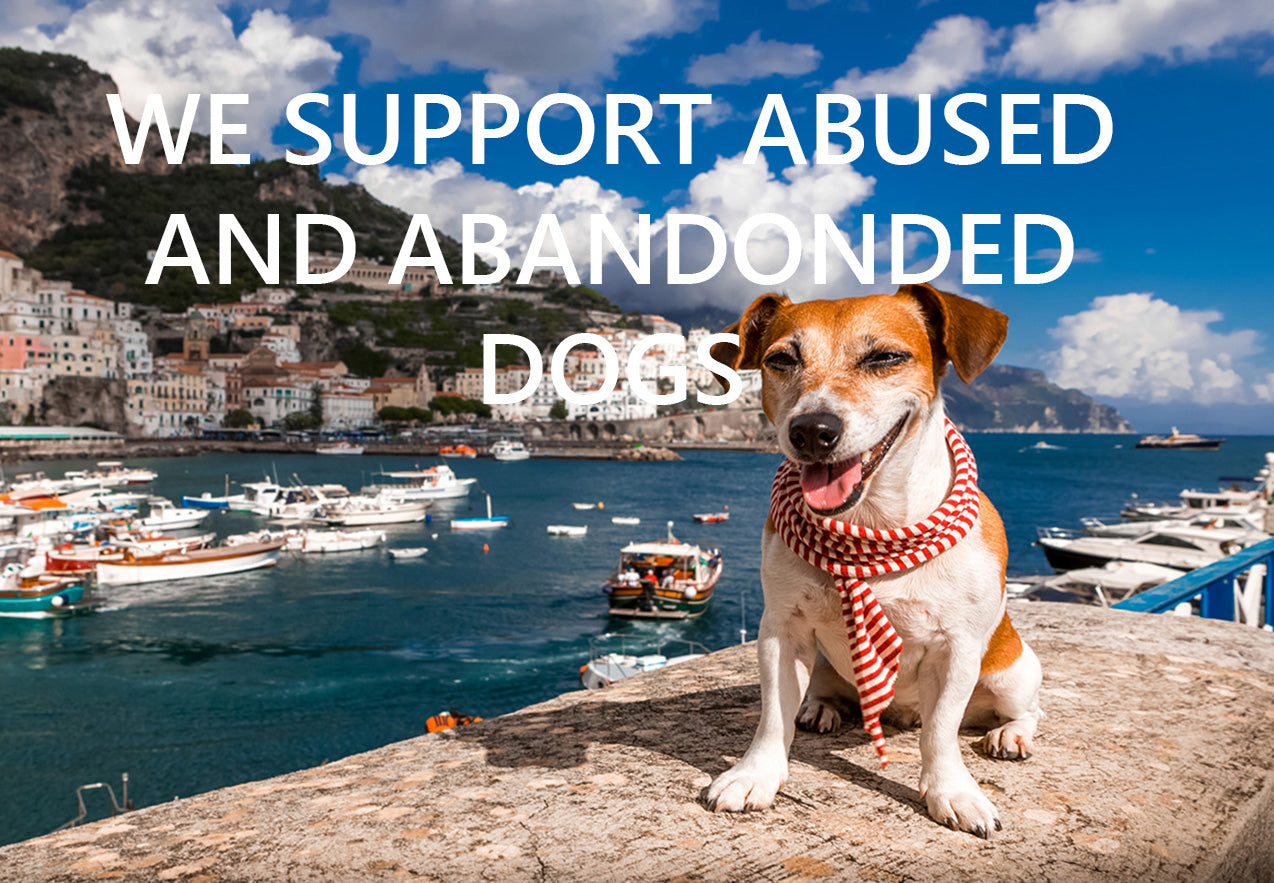 http://www.antoniostefano.com/pages/we-support-abused-and-abandoned-dogs