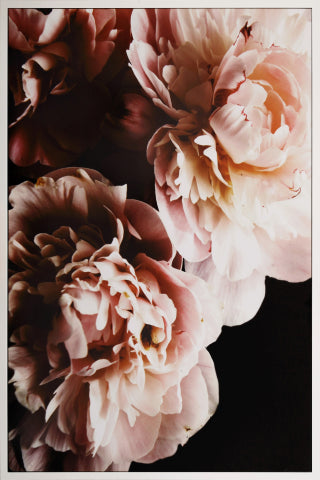 Canvas Blossom 80x120