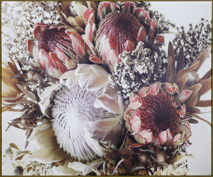 Canvas Protea Pink 120x100