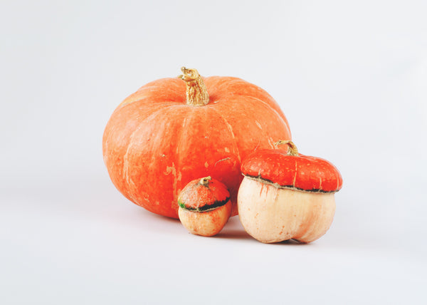 Winter Pumpkin