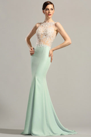 Sleeveless Lace Applique Evening Gown Formal Dress (00154904)