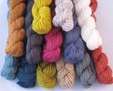 The Fibre Company - Cumbria Fingering - Mini Skeins