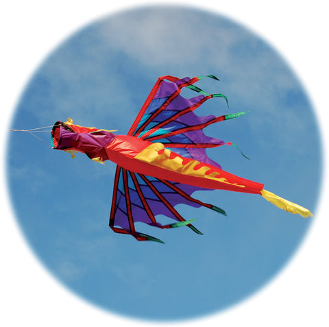 Dragon Windsock - Fire - SKY HIGH KITES