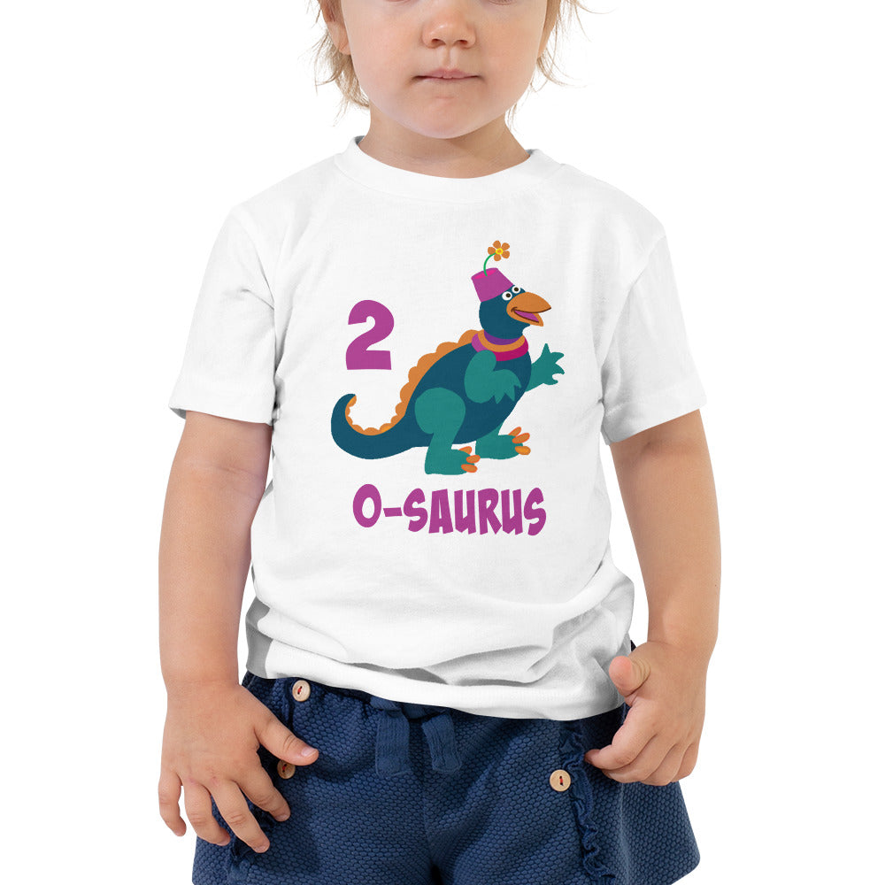 Birthday Shirt Boy 2 Year Old Shirt Second Birthday Shirt Boys and Girls 2nd Birthday Shirt with Green Dinosaur Birthday Shirt Gift for Kids