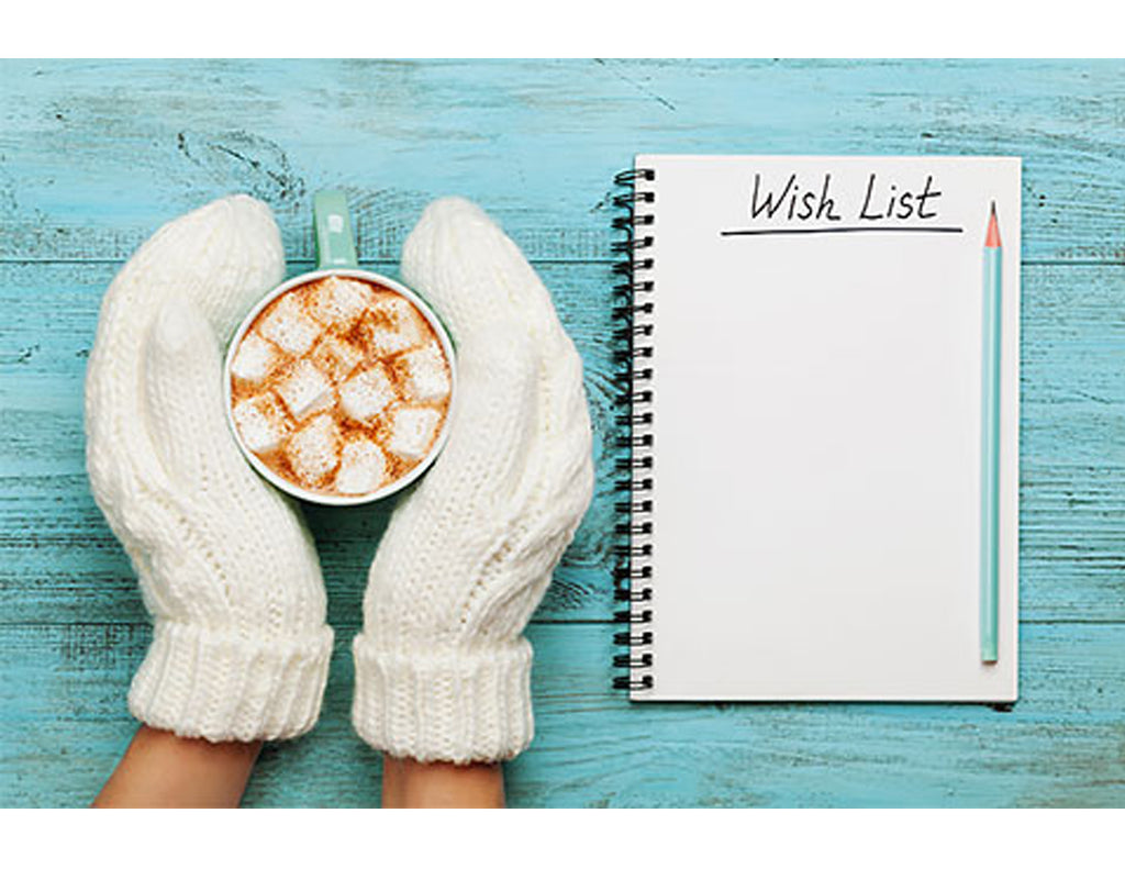 Our Holiday Wish Lists