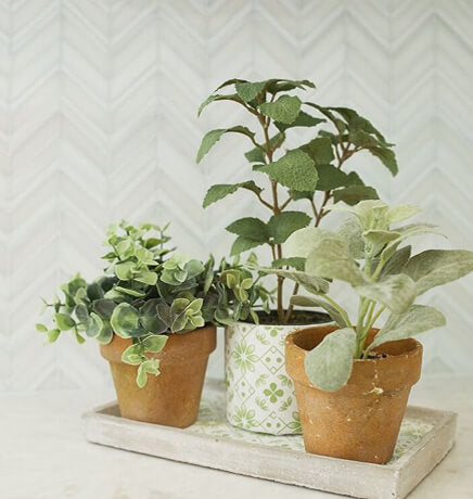 bayberry-cottage-plant-decor