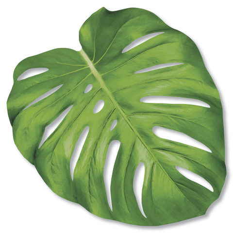 Monstera Leaf Paper Placemat Set of 12
