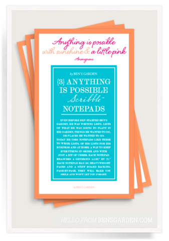 Anything Is Possible Scribble Notepad Set of 3